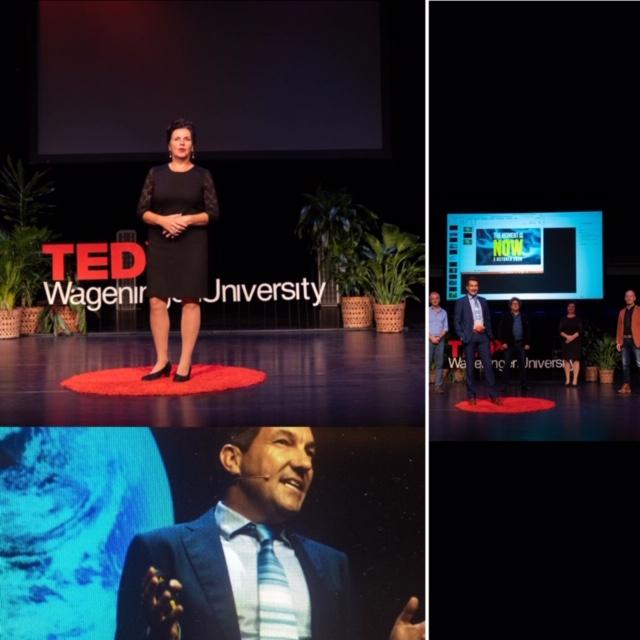 TEDxWageningenUniversity 2020